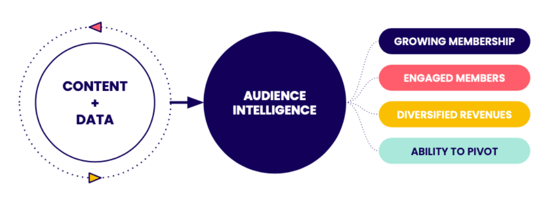 Audience Strategy Model Hum