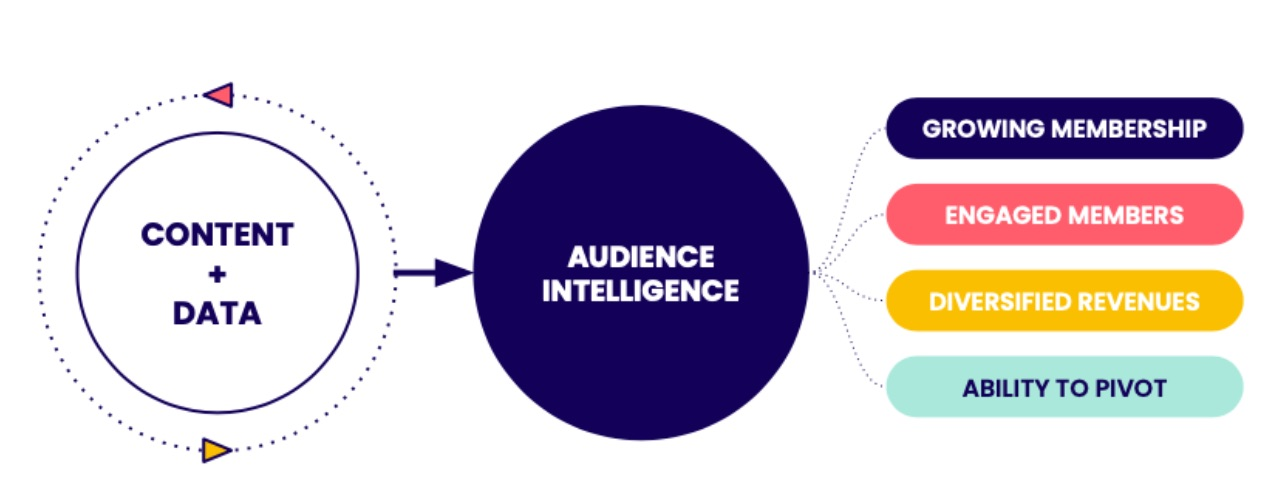 Audience Strategy Diagram